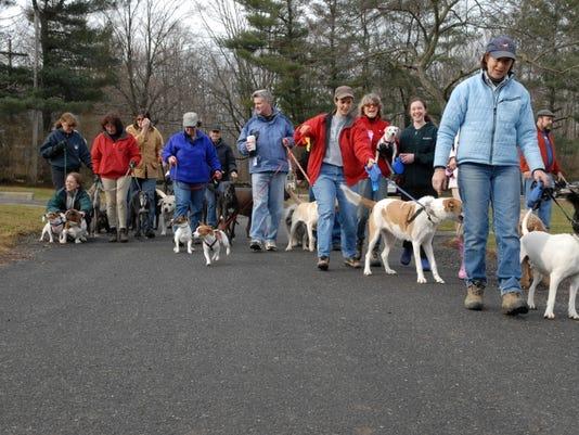 Bernards: Special New Year's Day dog walk PHOTO CAPTION