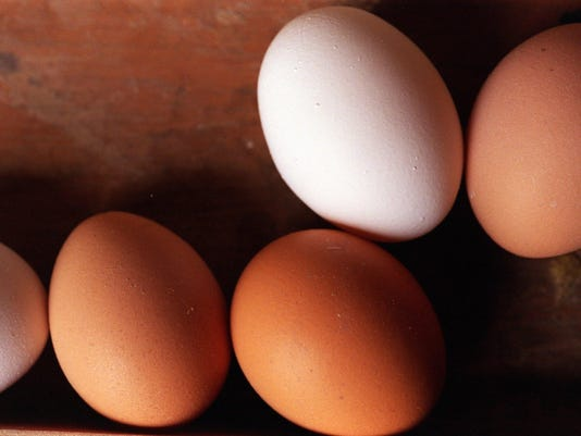 DFP Cool Egg Facts (2)