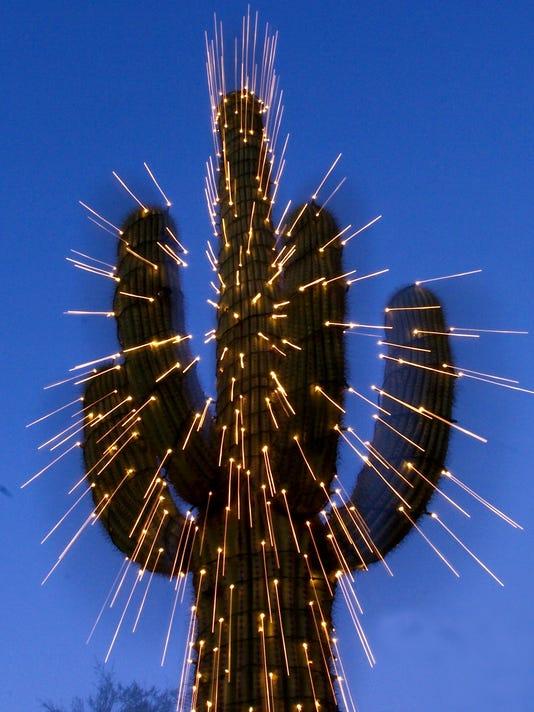 Lights Decorate Saguaro