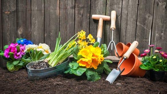 Home gardening tools in fresh soil.