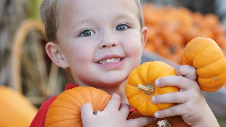 Sept. 22-24: Farms, festivals offer fall fun this weekend
