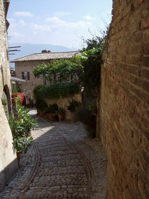 Espaliers with local Sangrantino grapes create fences between the courtyards and narrow streets of Montefalco, Umbria.
