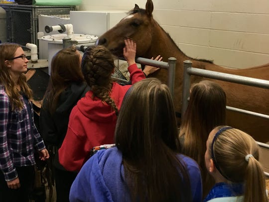 Trixie the horse visited the ag science class, and