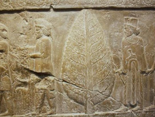 Seen here is a relief carving found at Persepolis,