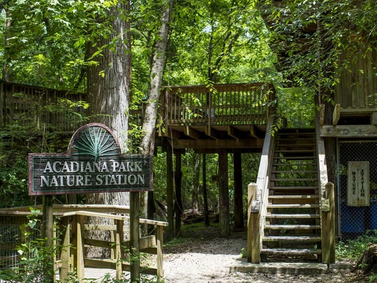 Head to Acadiana Park at 8 a.m. today for a Beginner Trail Run.