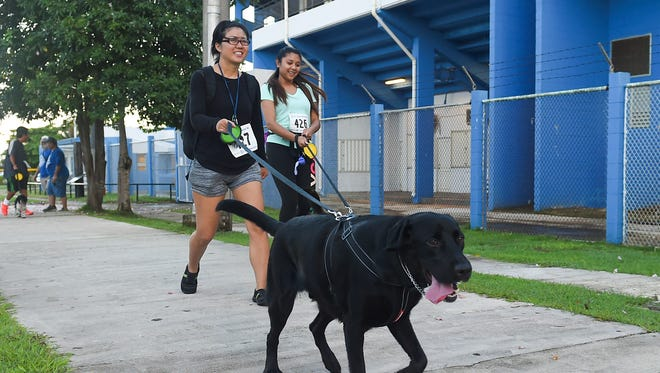 Owners and their dogs compete during the Rotary Club of Guam Sunrise 2K Pet Run/Walk at the Paseo de Susana Park in Hagåtña on June 17, 2017. A similar run hosted by Guam Animals In Need will be held Sunday.