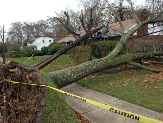 Sandy-Wayne-Tree-downed-lines.jpg