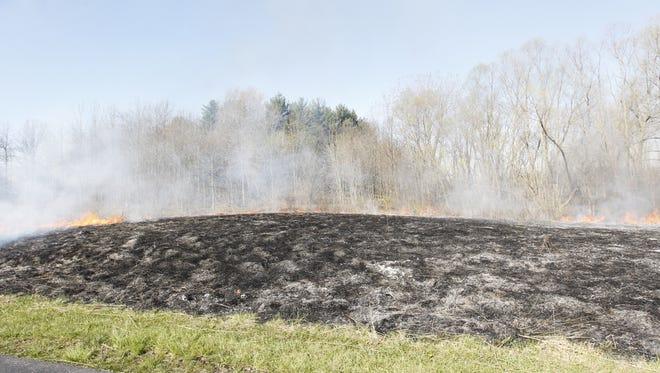 Controlled burn at the Celery Bog