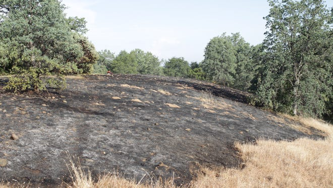 The fire on Grandview Avenue and Stokes burned though one and a half acres, according to the Redding Fire Department.