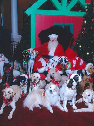 Christmas greetings from Santa's Precious Paws, front row, from left, Libby, Bella Lucy and Gifford; middle row, Lexie, Diamond and Hurricane; back row, Freedom, Baxter, Kodi, Alia, Justice, Bruster and Deliah. Anyone interested in pet therapy can call 717-632-4934 or 717-451-4783.