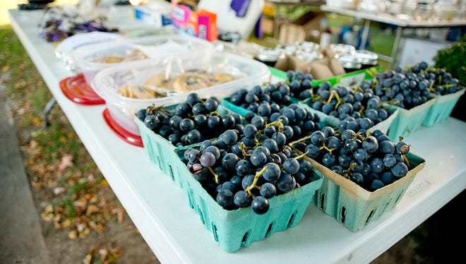 Thousands of visitors to the Naples Grape Festival enjoy live music, pie contests, arts and crafts, baked goods and wine tasting along Main Street in Naples.