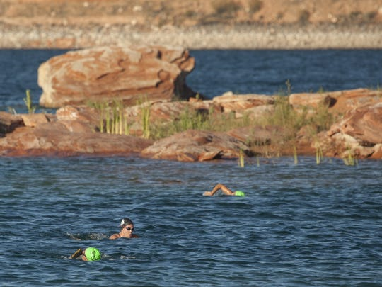 Swimmer's itch active at Sand Hollow