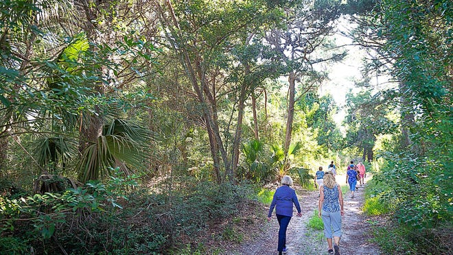Members of the Friends of Fish Island group tour the 57-acre Fish Island property, south of the State Road 312 bridge in St. Augustine in 2019.