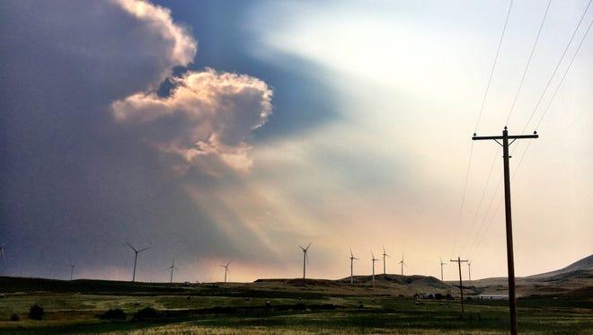 Spion Kop Wind Farm near Geyser
