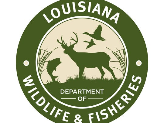 Two men from Marksville and one from Pineville have been cited for allegedly hunting deer illegally over a two-month period in Avoyelles Parish.
