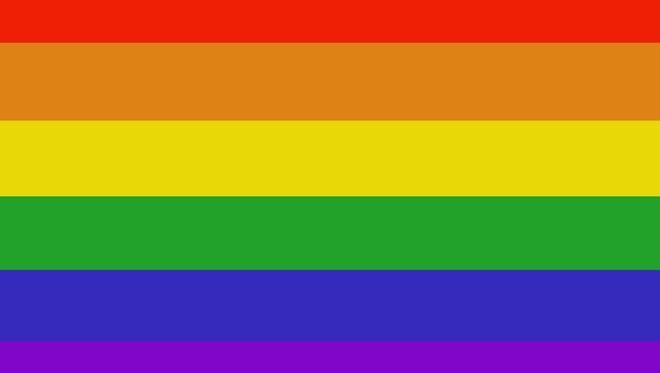 Gay and rainbow peace flag.