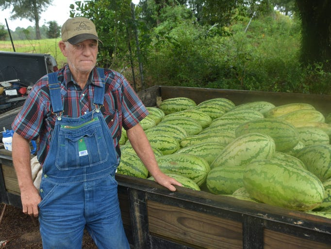 Louis Lasyone sells watermelons along Military Highway near Lowes  in Pineville Sunday, Aug. 31, 2014. Lasyone said he will be at the same location Monday beginning around 10 a.m.-Melinda Martinez/mmartinez@thetowntalk.com