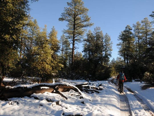 This trail in Payson is a pretty place to hike in the snow.