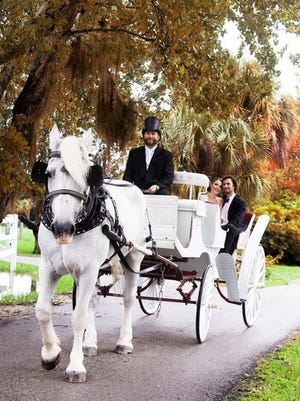 Moe the Percheron has given rides to Dolly Parton. Now he takes local couples on romantic trips around Cocoa Village, the Avenue and downtown Melbourne.