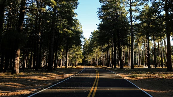 The scenic drive to Cape Royal at the North Rim in