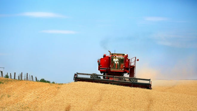 A combine harvests wheat along the Oregon-Washington border, southwest of Walla Walla, Wash.