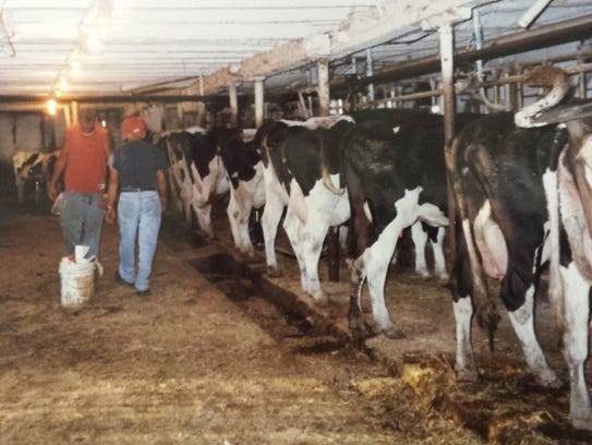 Mickey Donnelly had a passion for his dairy farm.