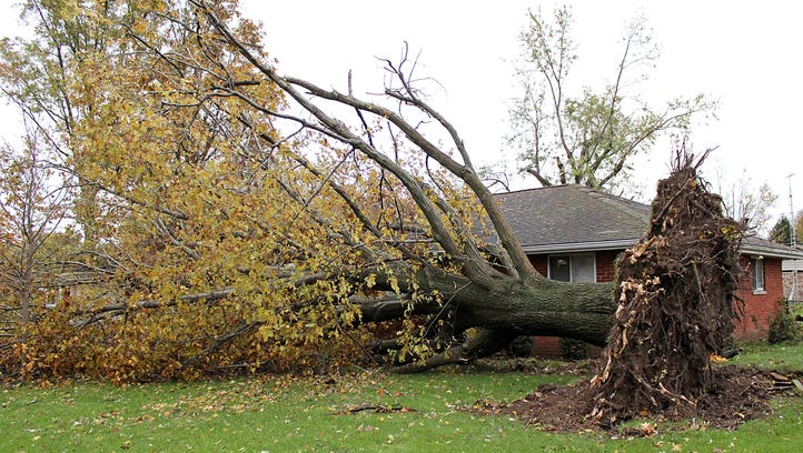 Yorktown awakens to downed trees, damaged homes