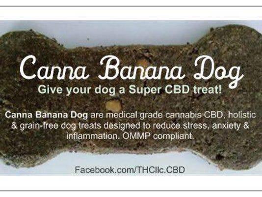 636045334630314366-The-Healthy-Canine-2.jpg