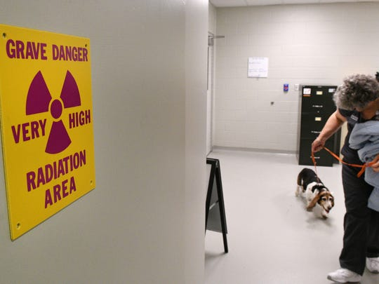 Dawn Hills walks Phoebe into the radiation treatment room  at UT College of Vet Medicine Friday, Jun. 9, 2017. A $350,000 donation from Petco and Blue Buffalo is helping pay for cancer treatments for pets whose owners can't.
