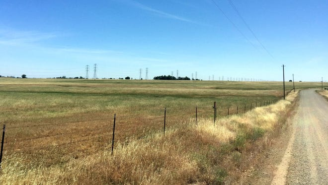 John Duarte faces a $2.8 million fine for plowing this field south of Red Bluff, Calif., in 2012.