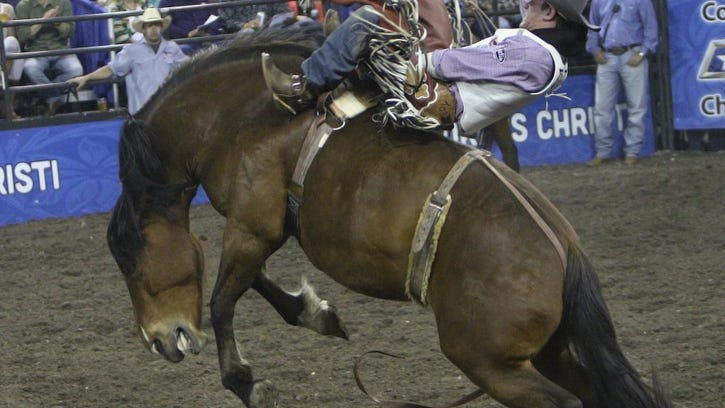 It's Rodeo Time in Corpus Christi: What to expect at the 2018 version at the American Bank Center