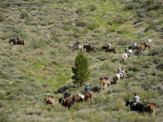 The Horsemanship and Animal Packing at the U.S. Marine Corps Mountain Warfare Training Center is the only such course in the U.S. military and demand is high.