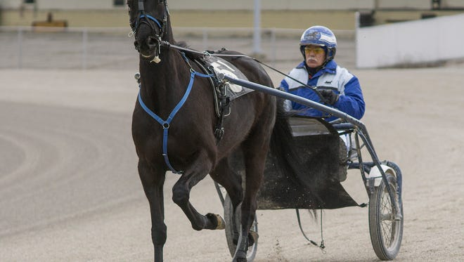 Northville Downs harness racing venue has reportedly been sold to a Farmington Hills-based land-development company.