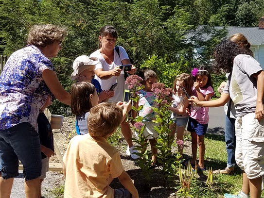 Kids and parents take photos of pollinator bushes at