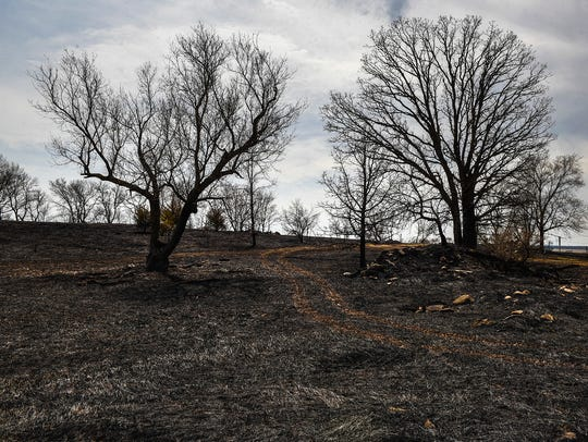 A grass fire scorched about 167 acres of land and damaged