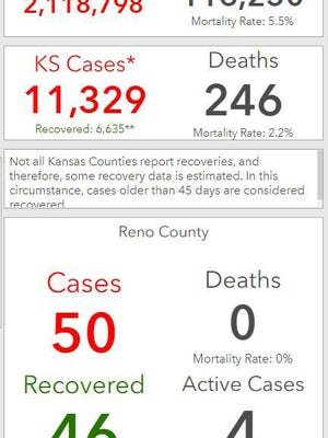 This snip from Reno County's COVID-19 page shows case counts for the nation, state and county.