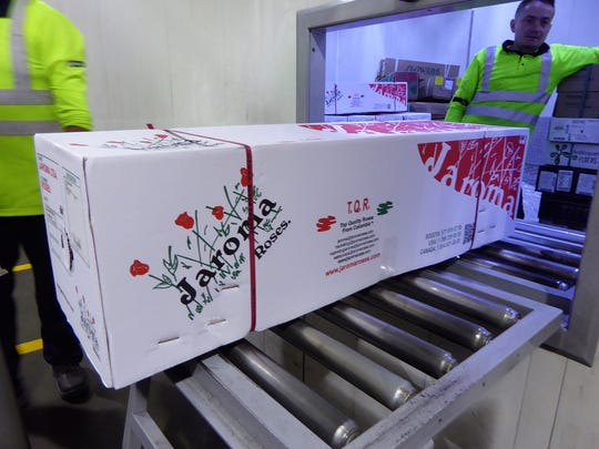 Box of Jaroma Roses arrives in the cargo facility at