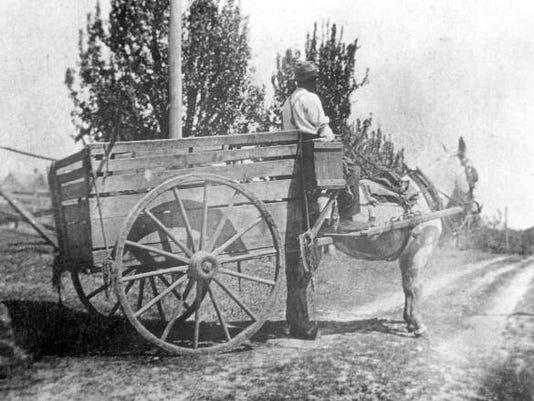 1916 trash collector SECONDARY 1D.jpg