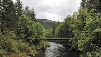 The Molalla River Corridor offers a variety of recreational opportunities such as hiking, bicycle riding, horseback riding, fishing, kayaking, swimming, picnicking and nature watching.