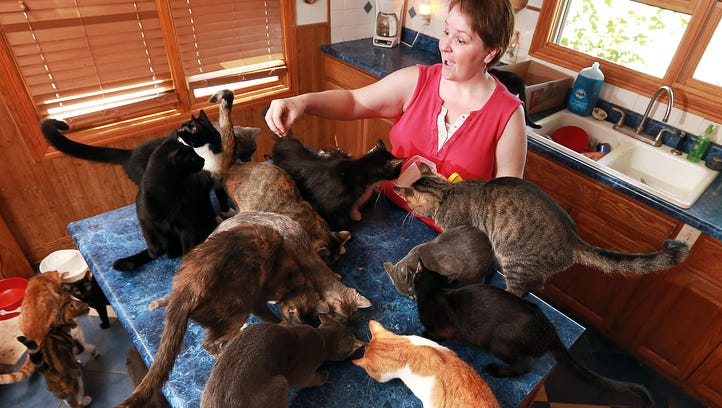 Cara Hunter is surrounded by cats in her Grand Island,