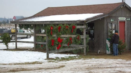 The Brian family is excited that this year the farm has indoor bathrooms for visitors.