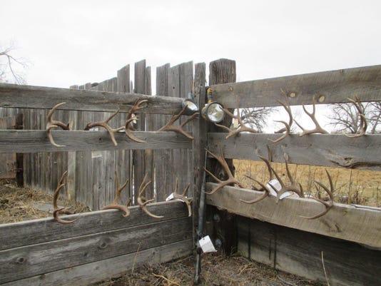 hunting violations.jpg
