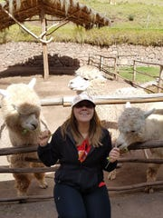 Sofia Sachtjen feeding llamas at a stop in the sacred
