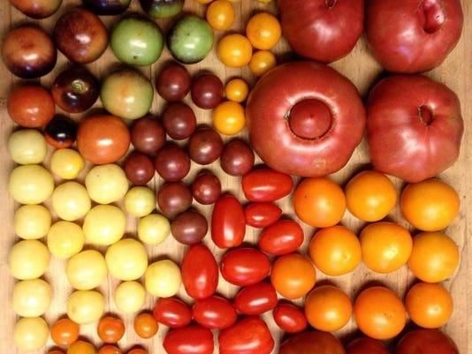 636324285924771503-Tomato-Feastival.jpg