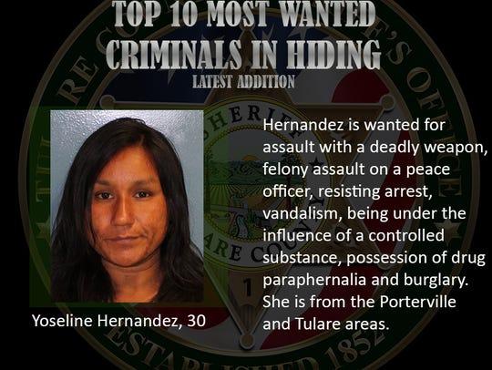 Yoseline Hernandez