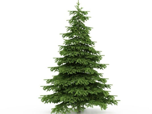cut your own christmas tree around louisville - Cut Your Own Christmas Tree