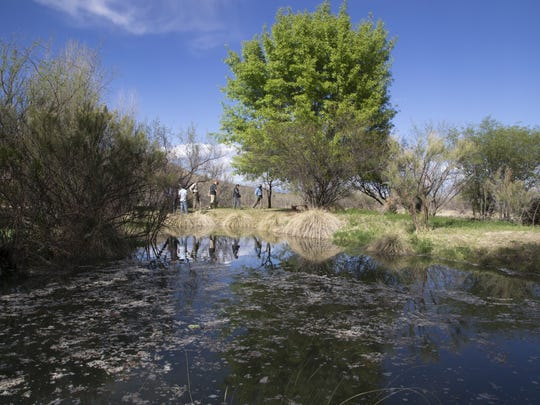Santa Cruz River water quality has improved but is still a matter of concern.