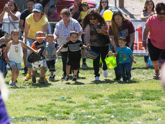 During the five to eight year old egg hunt at Springfest,