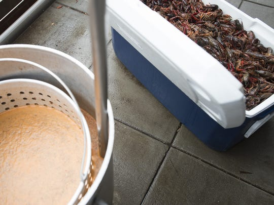 A cooler full of crawfish waits to be thrown in a pot of spices at The Lost Cajun.