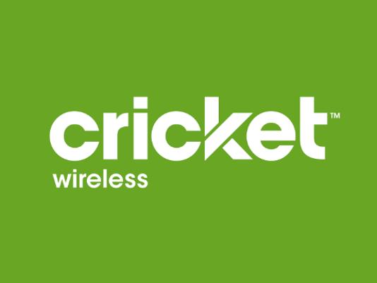 635787143430602333-cricket
